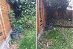 Garden-Clearance-13